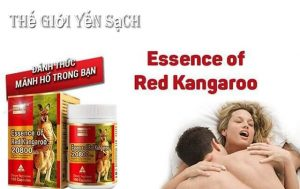 tang-sinh-ly-dan-ong-essence-of-red-kangaroo5